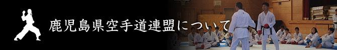 鹿児島県空手道連盟について